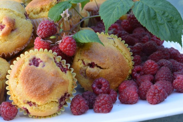 A tray of fresh Cornmeal Raspberry Muffins with citrus zest, right out of the oven and ready to eat.