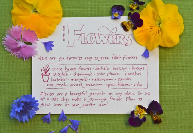 A card listing many edible flowers.