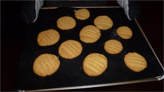 A cookie sheet full of gluten free peanut butter cookies.