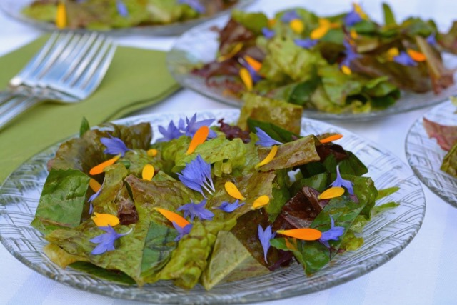 Make a basic vinaigrette salad dressing with a good quality balsamic vinegar, garnish with edible flowers for a beautiful first course.