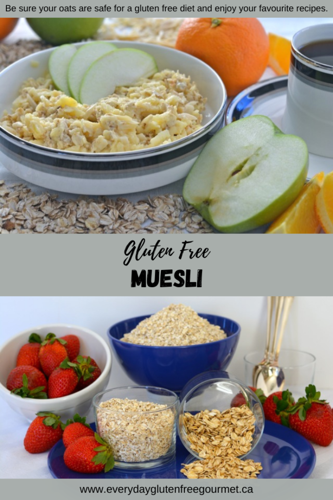 A bowl of muesli and a bowl of safe gluten free oats.